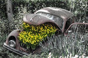 Oude Kever met bloemen van Lindi Hartman