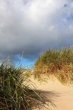 Schattenspiel in den Herbstdünen von Ostsee Bilder