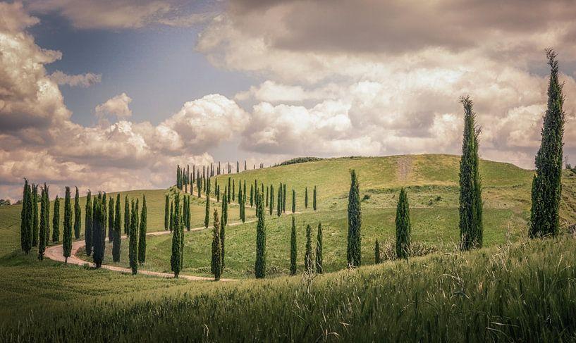Toscane van Dennis Van Donzel