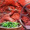 Colors of Marocco (12) van Rob van der Pijll thumbnail