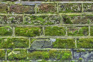 Gouttelettes sur un mur