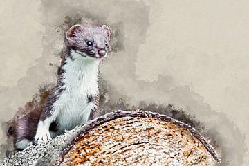 Hermelijn op een boomstam van Art by Jeronimo