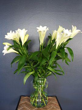 Amaryllis-Bouquet im Frühling