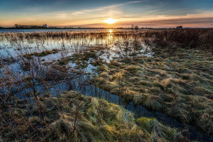Uitzicht over de uiterwaarden met hoog water van Fotografiecor .nl