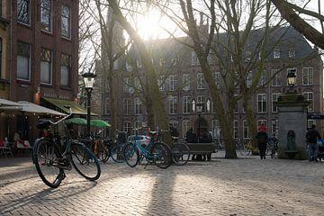 Mariaplaats, Utrecht van Daniel Van der Brug