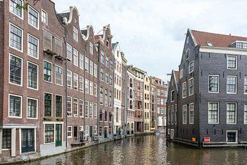 Herenhuizen in Amsterdam van Richard van der Woude