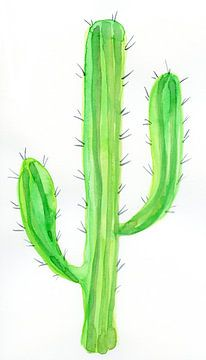 Cactus sur Esther  van den Dool