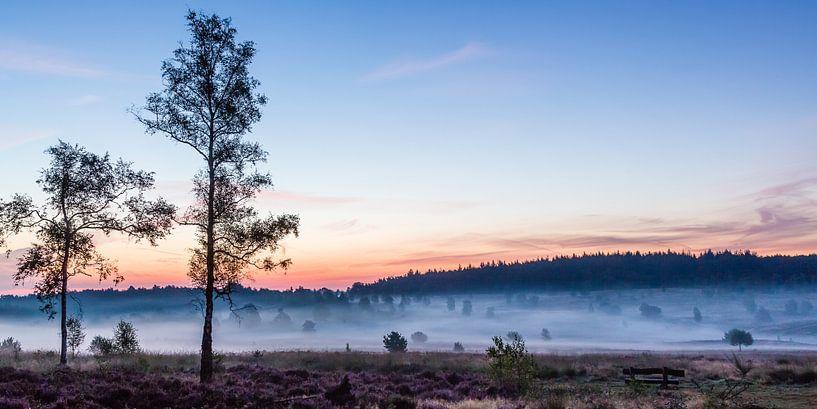 Brume matinale à Het Leesten sur Joop Gerretse