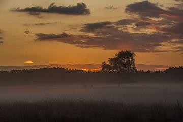 Sonnenaufgang von Carla Eekels