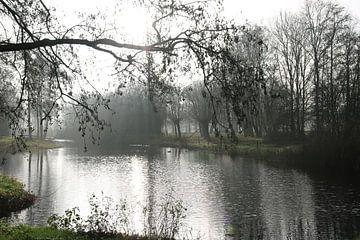 Die Sonne bricht durch den Nebel von Pim van der Horst