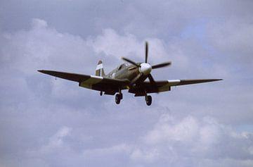 """Curtis P40 """"Warhawk"""" van Joachim Serger"""