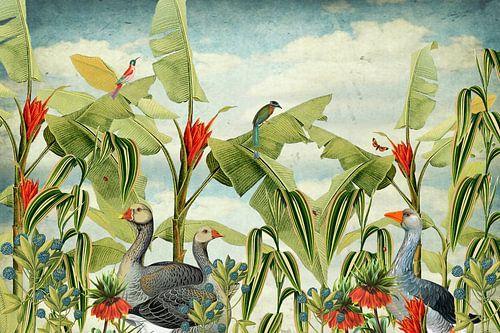 Botanisch met ganzen, tropische vogels en bloemen