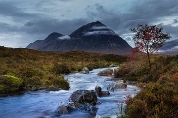 Herbst in den schottischen Highlands von Paul Begijn