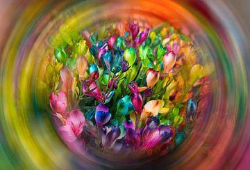 Ein wilder Blütentraum von Han Dou