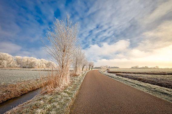 Hollands winterlandschap van eric van der eijk