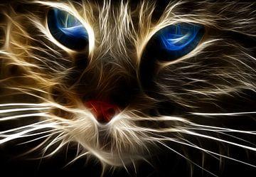 Blaues Auge von Bert Hooijer