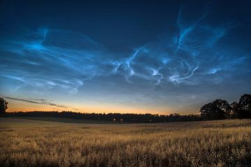 Noctilucent clouds van Marc Hollenberg
