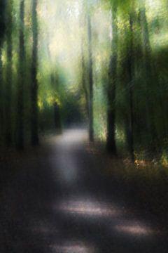 Perlenwald von Rinke van Brenkelen