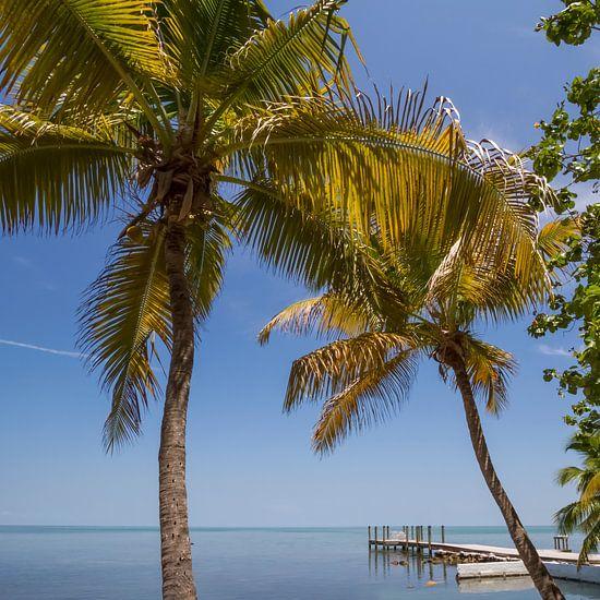 FLORIDA KEYS Heavenly World