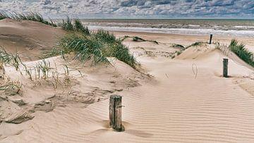 Nordsee mit den niederländischen Dünen von eric van der eijk