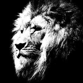 Leeuw - zwart wit van PictureWork - Digital artist
