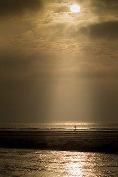 Eenzame wandelaar van Jan Nijeboer