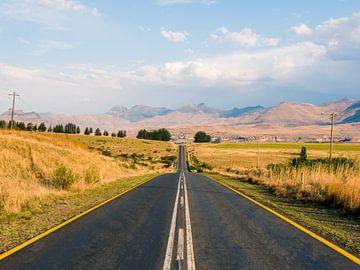 Sud Africanische  von Thomas Bartelds