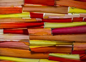 colour the world von Geertrui Desmet