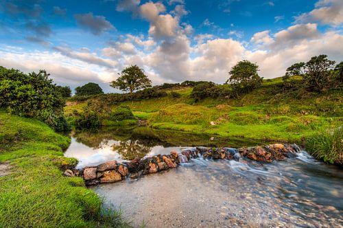 Beekje in een groen landschap van Wicek Listwan