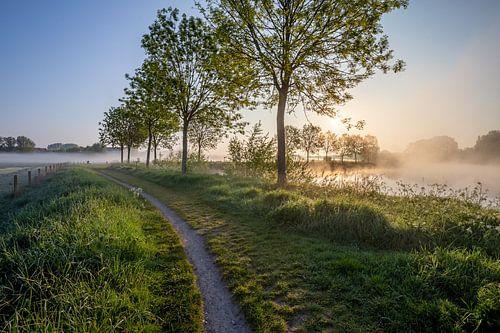 Lever de soleil lors d'un voyage sous la rosée le long de la Lys à Wevelgem - Flandre occidentale