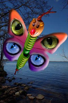 Clown Schmetterling von Bert Burkhardt