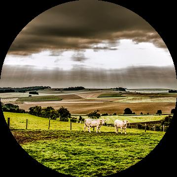 Landschap Normandië van Harrie Muis