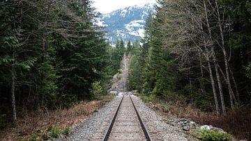 Railroad von Bjorn van der Wee
