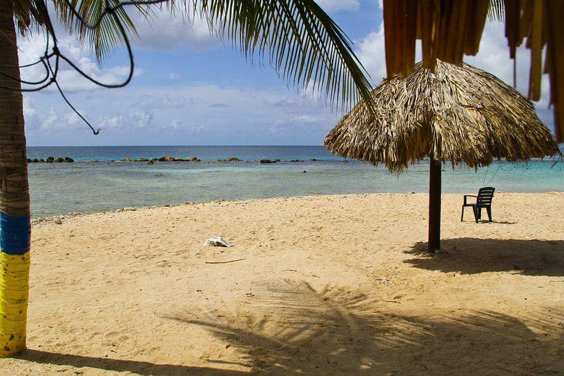 Tropisch Curacao von rene marcel originals