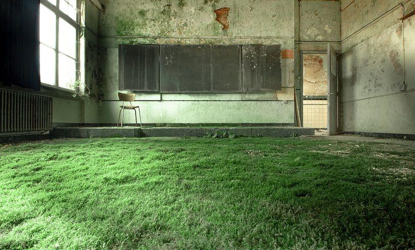 Groen tapijt van Olivier Van Cauwelaert