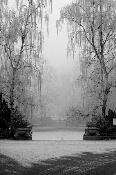 Noorderplantsoen in de Winter 9 van Ronald Hulsebos