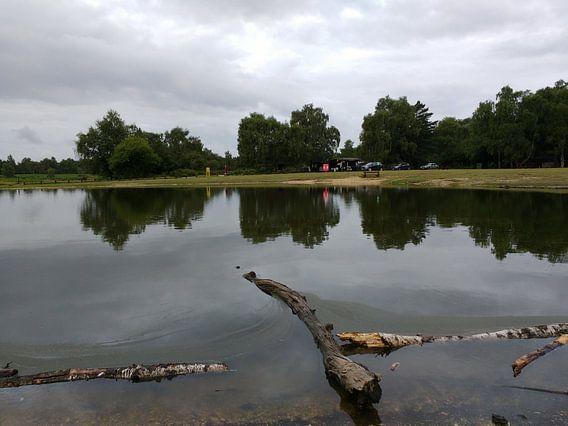 Camping Dartmore Park Engeland