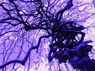 Tree Magic 100 - purple! van MoArt (Maurice Heuts)