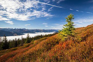 """Paysage de montagne """"Vue sur les nuages"""" sur Coen Weesjes"""