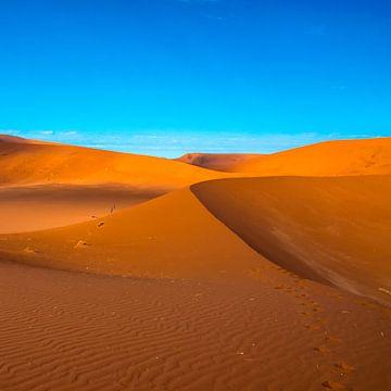Lijnenspel in de duinen van de Sossusvlei, Namibië van Rietje Bulthuis