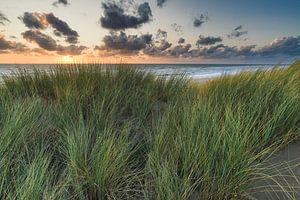 coucher de soleil avec la mer du Nord et les dunes sur