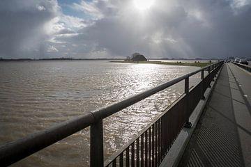 Hoog water in de Noordwaard Biesbosch van Eugene Winthagen