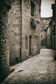 Straße in Sarlat-la-Canéda von Jan van der Knaap