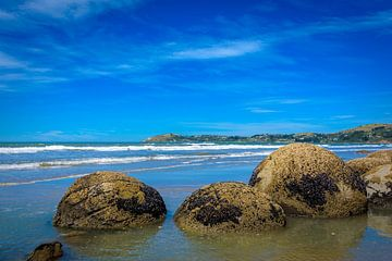 Moeraki Boulders am Strand, Neuseeland von Rietje Bulthuis