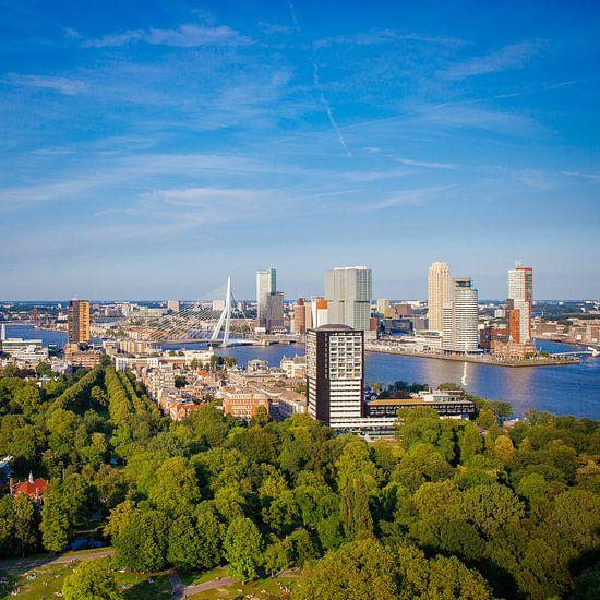 Zomer in Rotterdam van Pieter Wolthoorn