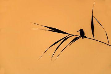 Tranquility; IJsvogel balancerend in het riet, Japanse stijl van Michael Kuijl