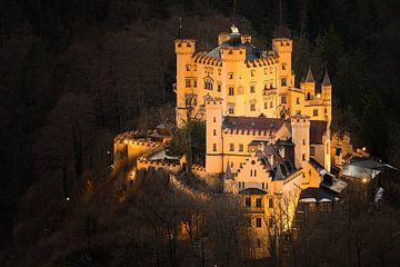 Schloss Hohenschwangau beleuchtet von Henk Meijer Photography