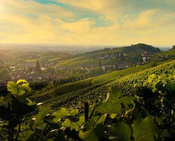 Zwarte Woud, Sasbachwalden van Eric Götze Fotografie