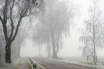 Frost and Fog sur Paul Muntel