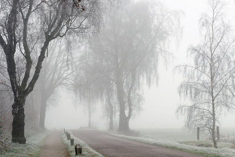 Mist en Rijp van Paul Muntel